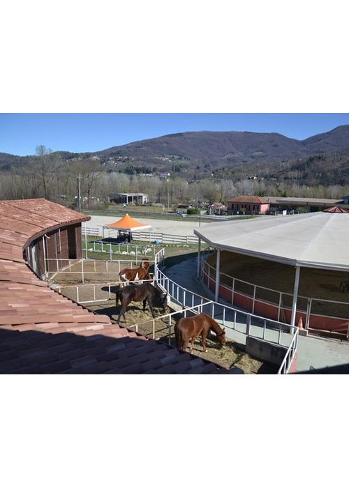 Stupendo maneggio e scuola di equitazione.
